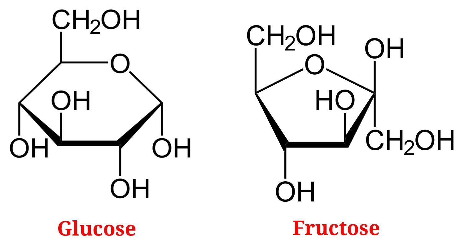 Sugar vs. HFCS | Nuff Zedd
